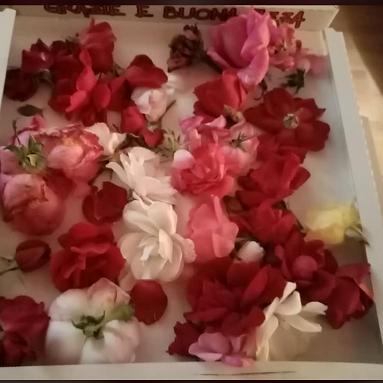 I fiori essiccati
