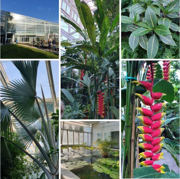 Il giardino della biodiversità 2014